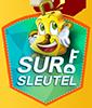 surfsleutel